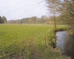 Ortschaft Bleckwedel: Wiese mit Fluss©Stadt Visselhövede