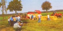 Ortschaft Rosebruch: Feld mit Menschen©Stadt Visselhövede